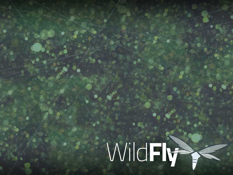 WildFly Desktop Wallpaper